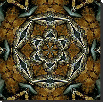 Driftwood Dreams - owlspook - featured in RedBubble's group AKK - A Kaleidoscope Kraze