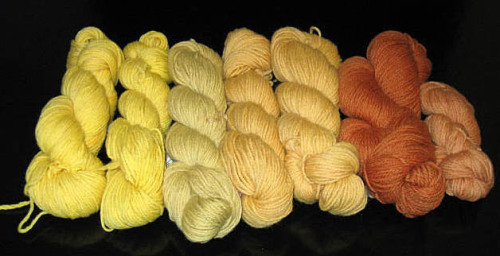 hand-dyed with onion skins