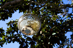 i love awesome lights or glass ornaments hanging from trees
