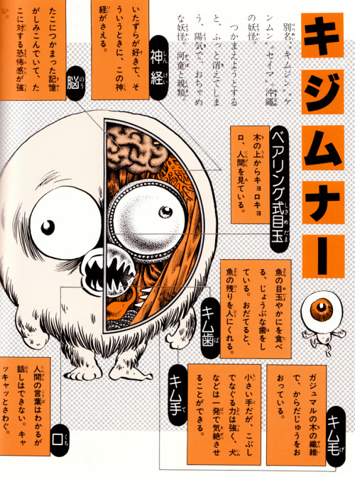 Another scan from Mizuki Shigeru's amazing yokai books. This is the anatomy of a Kijimuna from Okinawa.
