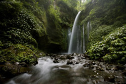 Tiu Kelep Waterfall, Lombok | Indonesia By: Randi Ang