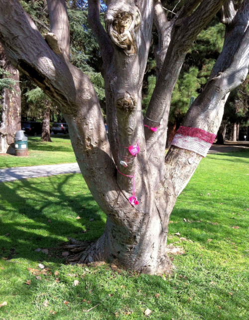 Sweet treats: tree dressers are so much sweeter than tree huggers.