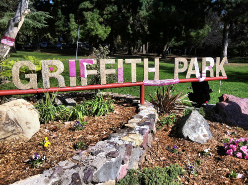 Sweet treats: A big pink kiss for Griffith Park, from a mysterious group known only as the 'Knotty Girls'.