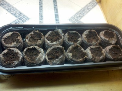 Grow: Chives, Garlic.Day: Two Description:Peat seems to be holding moisture still. Actions:Watered and misted the hood. Notes:I saw online that these peat pellets don't work so great, and can suffocate the seedlings. I am going to continue with them, but I don't expect these to grow, and I'll replace them with a new batch in a week if they haven't sprouted.