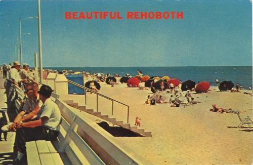 "bad-postcards:  BEAUTIFUL REHEBOTH Rehoboth Beach, Delaware  Beautiful.  I once spent a summer living with my cousin in MD. I was 19 years old and doing an internship at the National Cancer Institute. My cousin was in her fifties, and while she was warm and generous, the summer was socially stifling. She tried to find ""young people"" for me to go out with. Her secretary was one such person. My sister mailed me her ID so I could get into bars.  My cousin had rented a beach house in Rehoboth and we spent a few weekends out there, she and I. One such weekend I won $100 in the Delaware Powerball. I took my cousin out to dinner with my winnings."