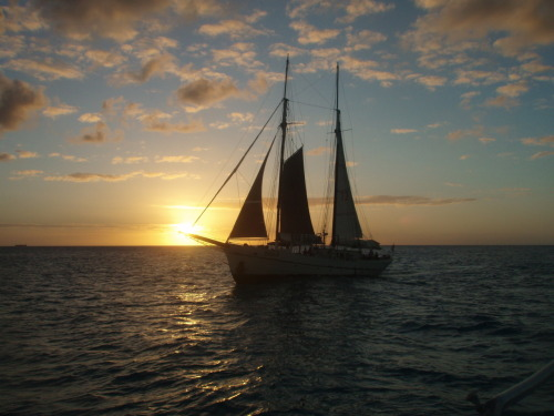 This is all I want right now for the rest of my life. A sail boat and a sunset in the Caribbean. (picture by my mom)