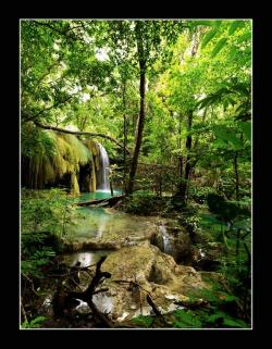 A waterfall in Moyo Island, North Sumbawa | Indonesia By: Beng J.