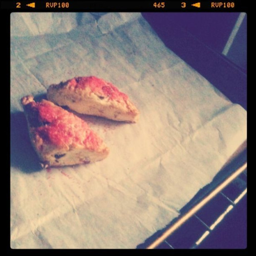 February 17 | Scones for breakfast. Toasted Coconut-Cranberry-Orange  scones at that (my own combination). Yum.
