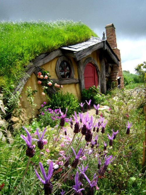 musicchick48: random-brilliance: skysignal: Photograph by Karen.  Hobbiton in Rotorua, New Zealand.