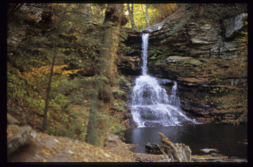 Ricketts Glen, PA (2008) … Asahi Pentax Spotmatic F and Pentax 50mm f/1.4 Super Takumar Fujichrome Velvia 100F