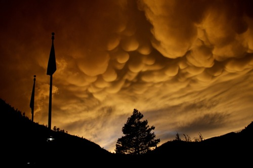 Mammatus Clouds Over Olympic Valley   Credit &  License:  Matt Saal  (Wikipedia)   Explanation:  What's happened to these clouds?  Normal cloud bottoms are flat because moist warm air that rises and cools will condense into water droplets at a very specific temperature, which usually corresponds to a very specific height.    After water droplets form that air becomes an opaque cloud.    Under some conditions, however, cloud pockets can develop that contain large droplets of water or ice that fall into clear air as they evaporate.    Such pockets may occur in turbulent air near a thunderstorm, being seen near the top of an anvil cloud, for example.    Resulting mammatus clouds can appear especially dramatic if sunlit from the side.    These mammatus clouds were photographed last August over  Olympic Valley,  California,  USA.  NASA: Picture of the Day