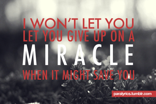-Miracle! I won't let you, let you give up on a miracle, when it might save you. Paramore