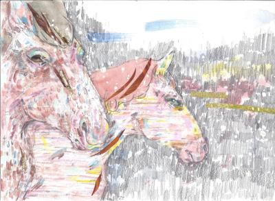 Finally, here is the scan of the drawing of horses that Greta (sjupunktre) did for me. I'm very pleased with it!!