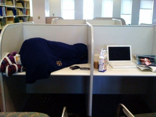 asianssleepinginthelibrary:  Leavey Library, USC. (Trust me, she's asian)  this make my day