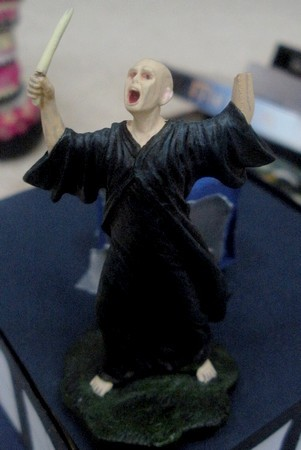 VOLDEMORT'S HAND BROKE OFF. HE'S NOW MISSING A NOSE AND A HAND.