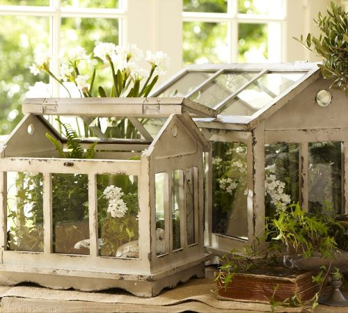 acottageinthewoods:  ~ like these terrariums from Pottery Barn