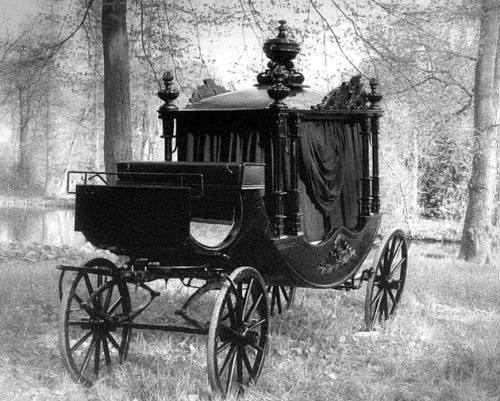 thecagedbluebird:  Victorian Carriage
