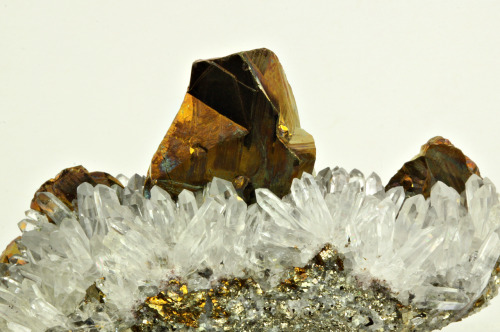 mineralia:  Chalcopyrite with Quartz from Peru