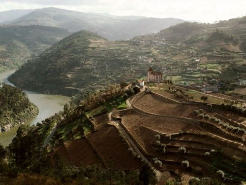travelbyfoldingamap:  Portugal's Douro River Valley © Stephanie Maze