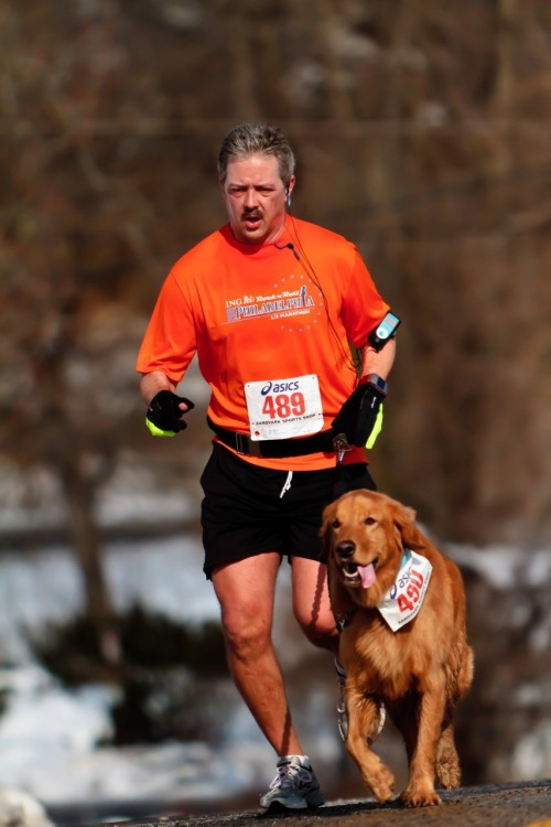"runnersworld:  Dog runs race…wearing his own bib number. Pictured: John Stribula, 46, and Champ, 8, running Allentown, Pennsylvania's Super Bowl 10K. RW Editor in Chief David Willey says, ""We've all seen people running races with their dogs, but this is the first time I'd seen a dog with its own bib number. John insisted that Champ's number be taken first at the finish, saying, 'He always beats me.'"" Read more in David's blog. And check out our section on running with dogs. Photograph by John Hoffman"