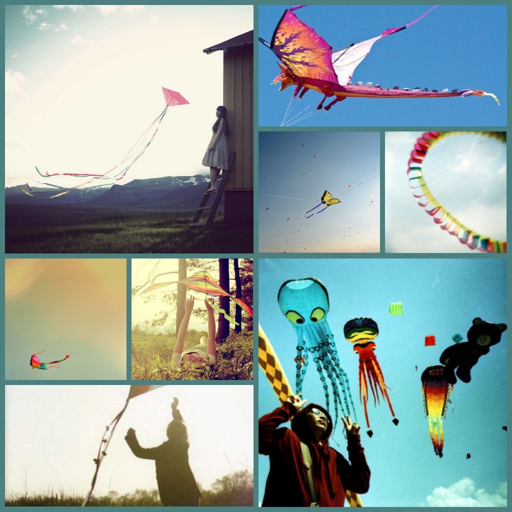 Throw your dreams into space like a kite, and you do not know what it will bring back, a new life, a new friend, a new county. - Anais Nin