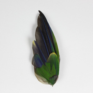 Magpie & Rye feather brooch wantwantwant