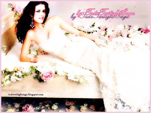 Fanmade: Bella Swan wedding dress