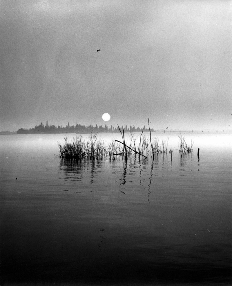 Edwin Smith The Lagoon, Venice, 1961. Thank you, luzfosca. Found here.