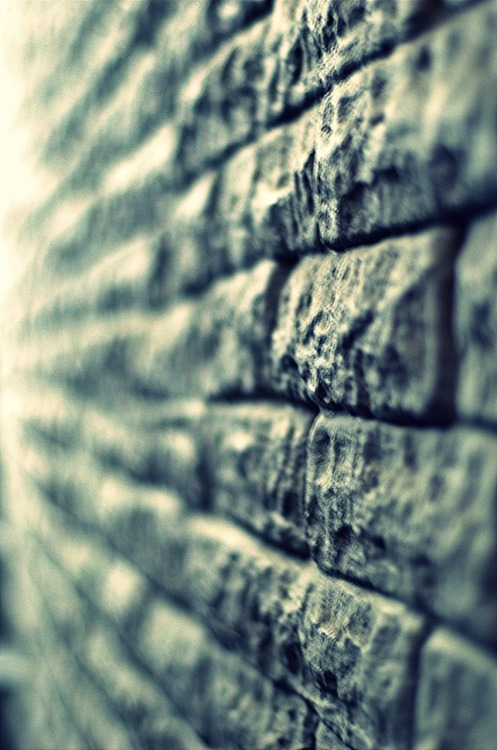 Day 52/365 -  … All in all you're just another brick in the wall…