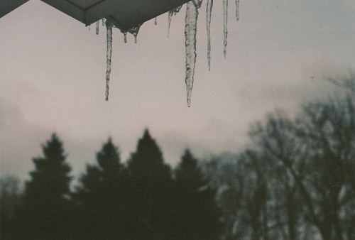 lightmeter:  (by laur∆whore)