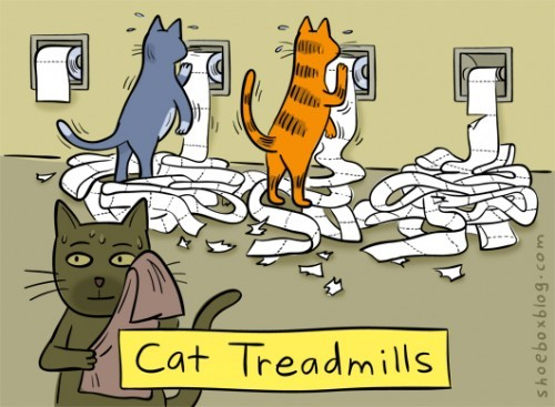Treadmill for cats. Works for dogs also.