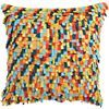 "paulasg:  CB2 - shaggy multi 20"" pillow"