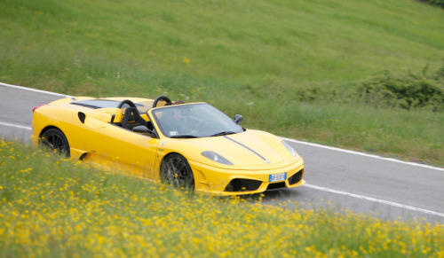 Yellow flowers (Ferrari 16M Scuderia Spider)