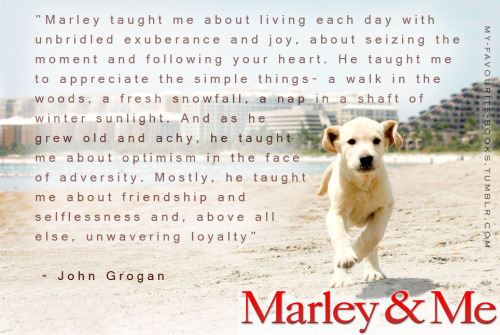 Sweet Book… Marley and Me, by John Grogan