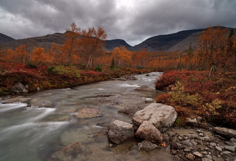 Autumn in the Hibiny Mountains.  Click for Source. I want to visit quite badly.