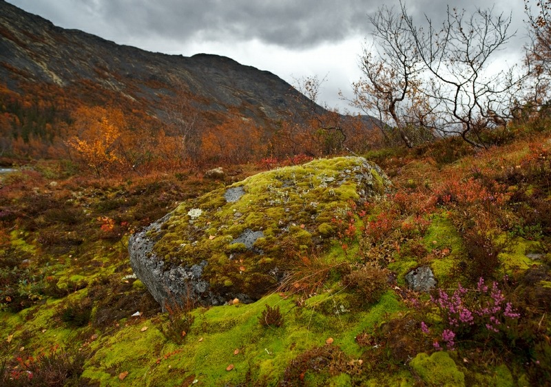Hibiny Mountains in Autumn.  Click for Source.