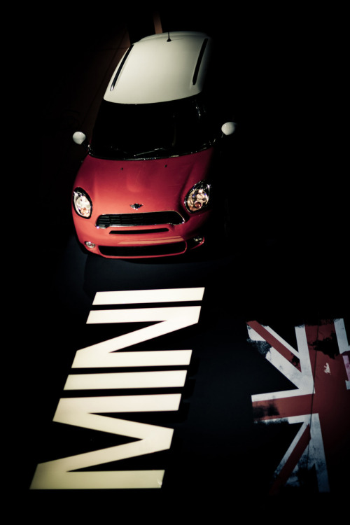 Red rose Starring: Mini Countryman (by raytranphoto)