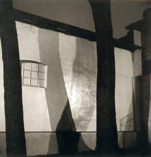 regardintemporel:  Herbert List - Wall and trees, Hamburg, 1930