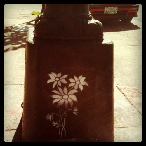 Flowers in the concrete jungle