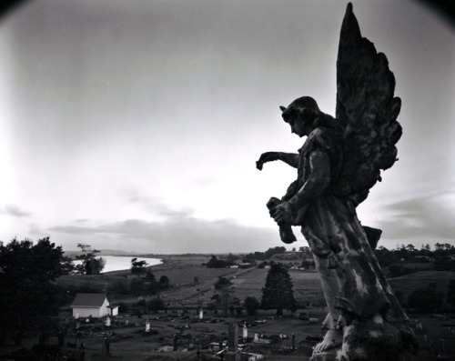 Dargaville [Mt. Wesley Cemetery]  Northland, 17 April 2003  by Laurence Aberhart