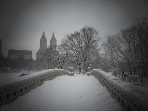 Bow Bridge. Central Park, Manhattan.  (Clicking through the photo will take you to where it is located on Flickr where you can see larger versions and/or more information.)