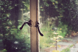 scissorsandlace:  Rainy window (by verhext)