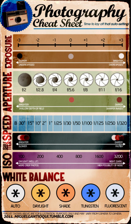 miguelinclosedcaption:  Infographic Poster 2: Photography Cheat Sheet.