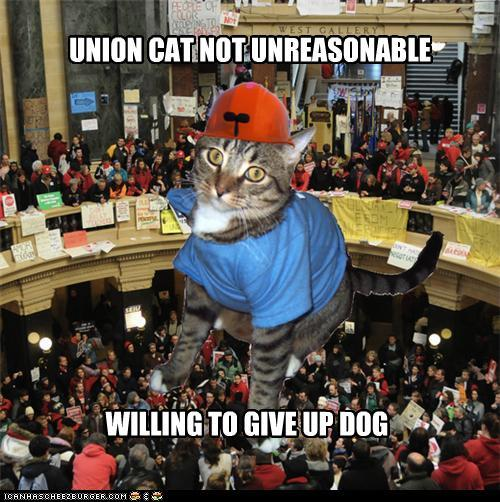 unioncat:  Will even concede vacuum cleaner.   Union cat iz teh bomb. Defnitlee 99 purrcent.