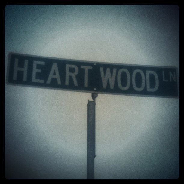 Yes. Yes I do. (Taken with instagram)