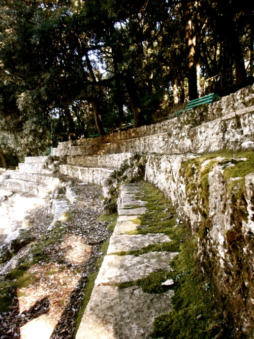 Assisi Little walk up the mountain and heyo! moss covered amphitheater