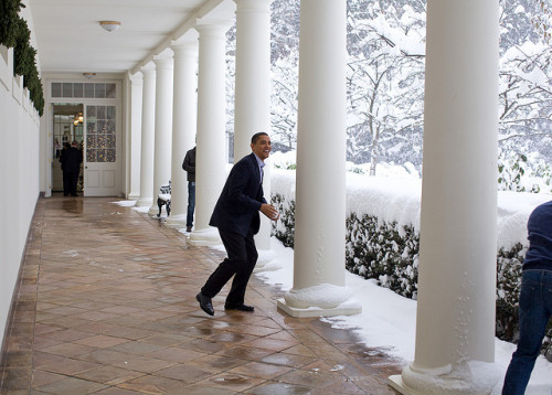 Snowball in hand, the President chases Chief of Staff Rahm Emanuel on  the White House colonnade. To escape, Rahm ran through the Rose Garden,  which unfortunately for him, was knee-deep in snow.