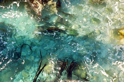 watery abstraction punkbythebook: