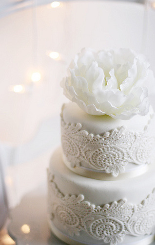 lovelyborrowedandblue:  weddingmuses:  The lace inset on this cake is amazing! So simple and pure in white!   ^ this is lovely.
