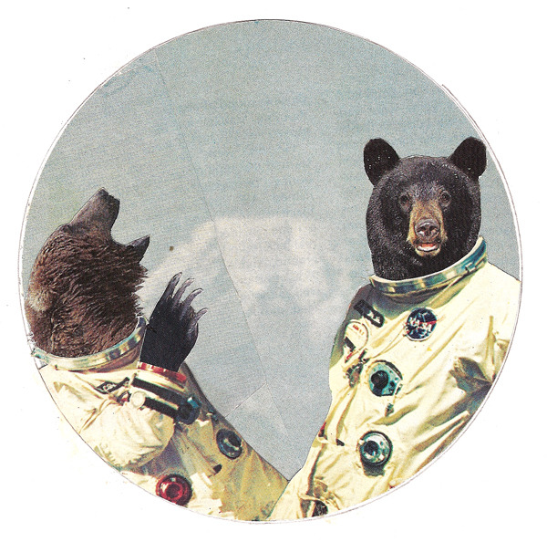 The little known American Bear Aeronautics Program, codenamed Project Ursa, ended in bloodshed before the bears ever reached space after a project scientist forgot to tie his food to a tree.  There were no survivors.